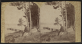 Northwest from Wells House, Schroon Lake, by Stoddard, Seneca Ray, 1844-1917 , 1844-1917.png