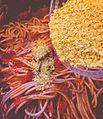 Nutritional yeast on spaghetti - vegan food (23746974042).jpg
