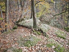 Oberthal-Teufelskanzel-20081026-04.jpg