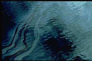 Exxon Valdez oil spill - During the first few days of the spill, heavy sheens of oil covered large areas of the surface of Prince William Sound.