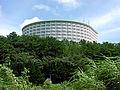Okinawa Kariyushi Beach Resort Ocean Spa.jpg