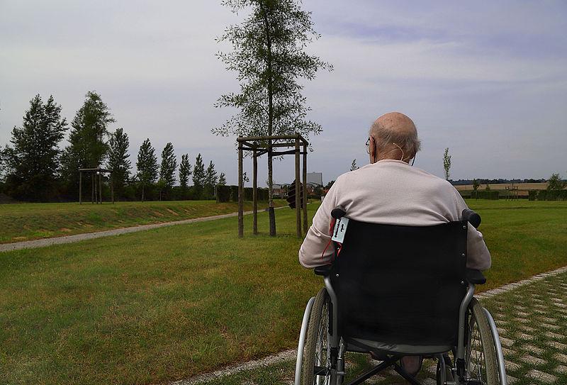 File:Old man reflecting J1.jpg