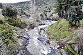 Omessa ruisseau de Sumano à Caporalino.jpg