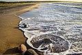 Pāvilosta - panoramio (31).jpg