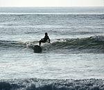 Paddle surfing 5 2008.jpg