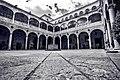 Palacio de los Guzmanes - Flickr - Aljores.jpg