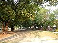 Paniqui,Tarlacjf5536 08.JPG