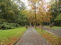 Park miejski w Kielcach (80) (jw14).JPG