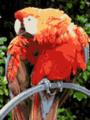 Parrot VGA 16 palette.png