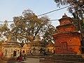 Pashupatinath Temple IMG 1496 25.jpg