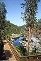 Passadiços do Rio Paiva - Portugal (22548816349).jpg