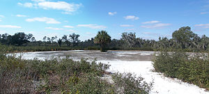 National Register of Historic Places listings in Hardee County, Florida - Image: Paynes Creek SP fort site pano 01