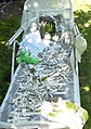 Peaks Island Peace Installation (889954220).jpg