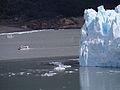 Perito Moreno Glacier, Argentinien (10354450564).jpg