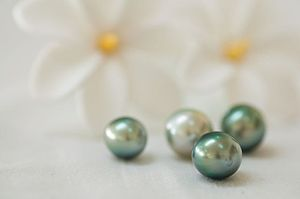 Rangiroa - Tahitian pearls in the pearl farm of Rangiroa