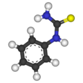 Phenylthiocarbamide-3D-balls.png