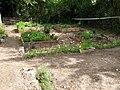 Picquigny jardin médiéval 1.jpg