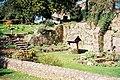 Piddletrenthide, a colourful garden - geograph.org.uk - 521787.jpg