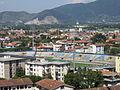 Pisa - Arena Garibaldi dalla torre.jpg