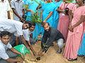 Plant tree in padappai y.t.t.i.JPG