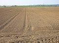 Ploughed Field near Snargate - geograph.org.uk - 394273.jpg