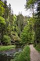 Polenztal - Elbsandsteingebirge - WLE 2015 - 04.jpg