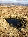Pool on Holne Moor - geograph.org.uk - 1181382.jpg