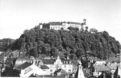 Postcard of Ljubljana from Nebotičnik (5).jpg