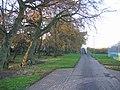 Pre-Livvi remnants. - geograph.org.uk - 80098.jpg