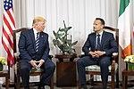 President Trump Meets with the Taoiseach of Ireland (48012259113).jpg