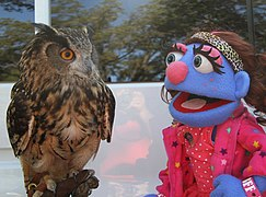 Puppet Bleeckie and an owl.jpg
