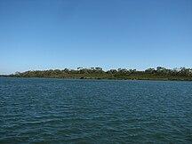 Quail Island--Quail Island Victoria