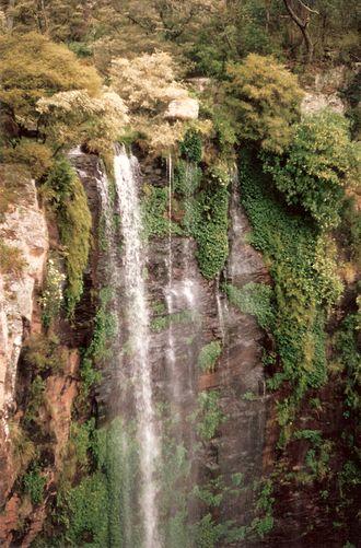 Gondwana Rainforests - Image: Queen Mary Falls 3