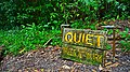 Quiet Trees At Work (14930524212).jpg