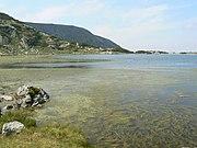 Водорасли в Рибното езеро, Рила