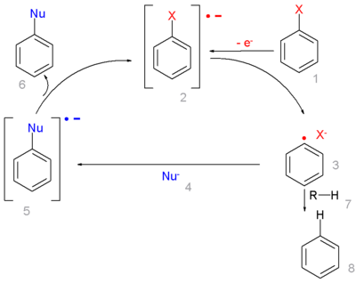 Radical-nucleophilic aromatic substitution Mechanism