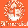 Radio-primordial.jpg