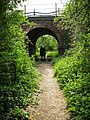 Railway Arch near Butt's Green - geograph.org.uk - 423343.jpg