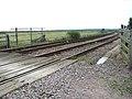 Railway line through the Norton Marshes - geograph.org.uk - 1442744.jpg
