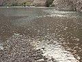 Rain in Bolan River - panoramio.jpg