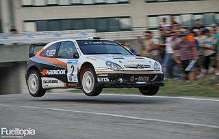 Didier Auriol French rally driver