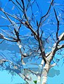Ramas secas en la espera digital painting de Zoraya Santiago.jpg