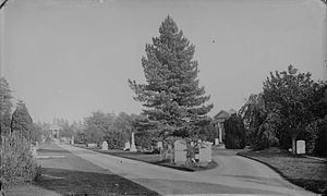 Reading Old Cemetery - Reading Cemetery, c. 1875 by Henry Taunt