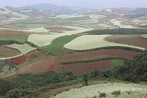 Dongchuan District - Red earth at Hongtudi