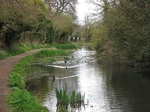 Wendover Arm Canal - Disused section of the canal near Wendover