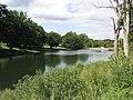 Reservoir, Cornbury Park - geograph.org.uk - 489521.jpg