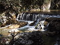 Rishikesh harikempty fallsdwar (403).JPG