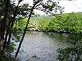 River Conon - geograph.org.uk - 203196.jpg