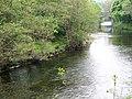 River Dart, Buckfast - geograph.org.uk - 1361895.jpg