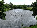 River Eden at Lazonby - geograph.org.uk - 1079086.jpg